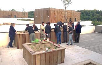 Résidence Oh Saint-Rambert : Les plantations sont réalisées dans les jardins partagés !
